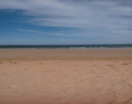 beaches are fun